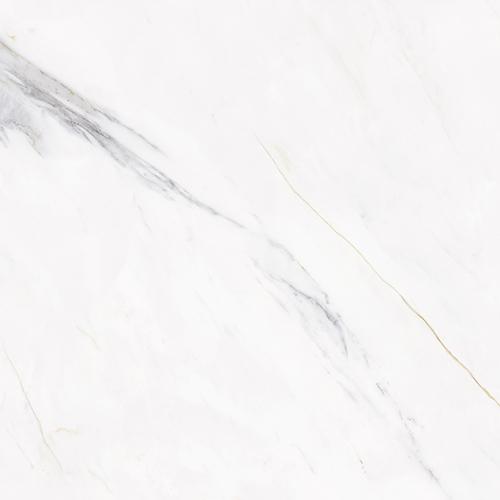 金线卡拉拉白